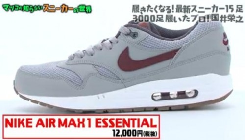 NIKE AIR MAX1 ESSENTIAL